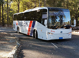 Welcome to Dingo Bus & Charter Hire Perth
